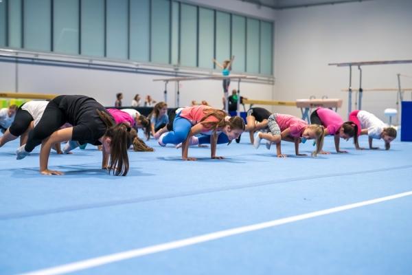 7 zlatnih darova gimnastike